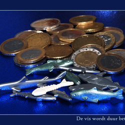 De vis wordt duur betaald!