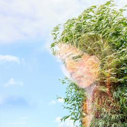 Girl_Pillard Willow / Meisje Knotwil