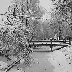 Sneeuw sloot