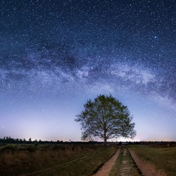 My way or the Milkyway