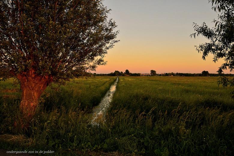 Ondergaande zon in de polder_DSC3498