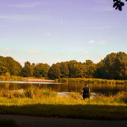 Savonds in het park