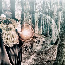 Merlins Black Magic