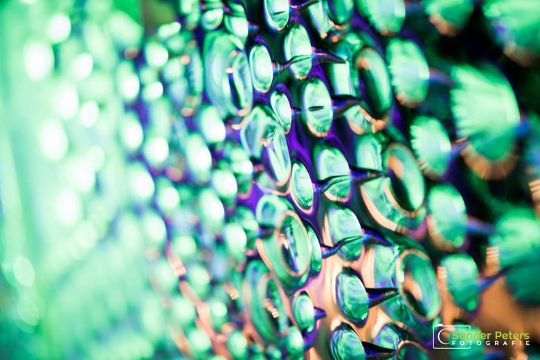 Groene drukte - Door de drukte tijdens het ijsbeeldenfestival heb ik ervoor gekozen om op zoek te gaan naar mooie details.