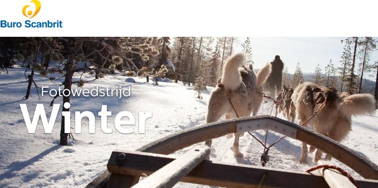 fotowedstrijd: Winter