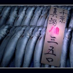Japanse vismarkt.