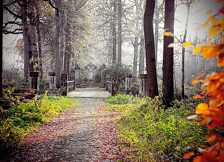 Kasteel Heeswijk in de herfst - Kasteel Heeswijk is een prachtig, in ere hersteld, kasteel in het mooiste stukje Brabant. Omdat de focus van het herst