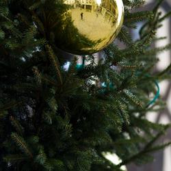 kerst in de stad