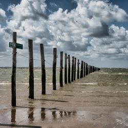 Strand Maasvlakte 2020