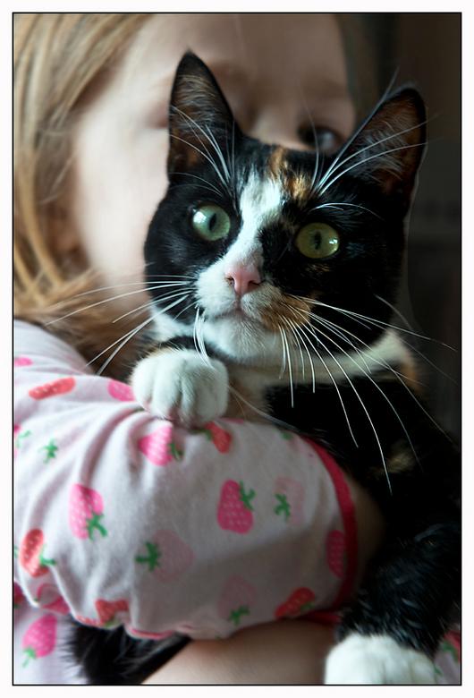 Robijn en Bessie.jpg - Ik maak geen foto's van katten, behalve als ik het moet van m'n kleindochter.