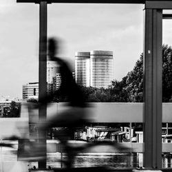Public Window - Utrecht