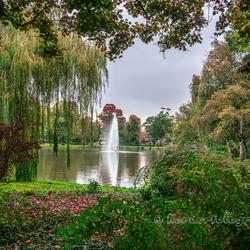 Doorkijkje in het Wilhelminapark