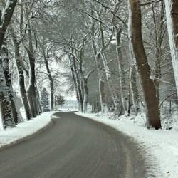 verstild in winterse pracht