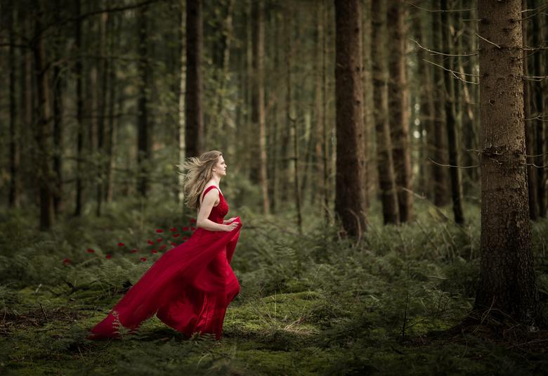 fairy-2 - Shoot in november in het bos inclusief visagie. Nabewerking alleen in LR.