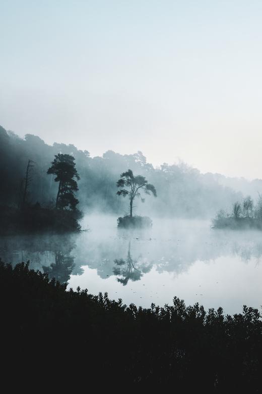 Oisterwijkse vennen - Een mistige en windstille ochtend bij de Oisterwijkse vennen, waardoor er een prachtige reflectie in het water zichtbaar was.