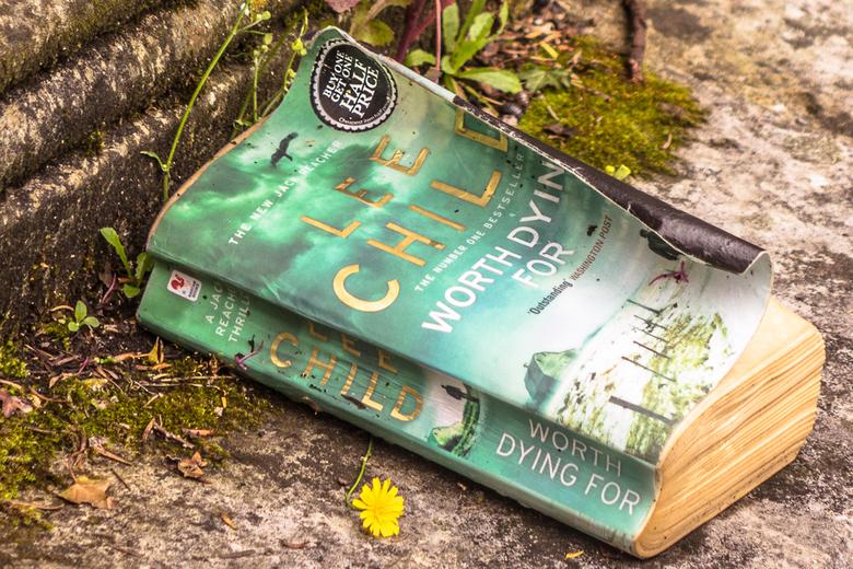 En dat alles voor de halve prijs - Deze foto heb ik genomen op een begraafplaats.<br /> En bij een grafsteen lag dit boek.<br /> Kreeg er een apart