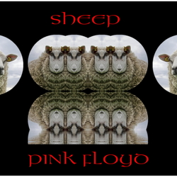 Sheep Pink Floyd