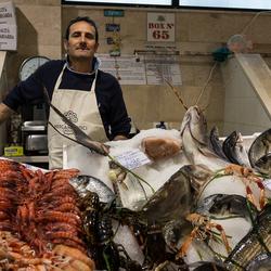 Mercato Comunale di San Benedetto 6