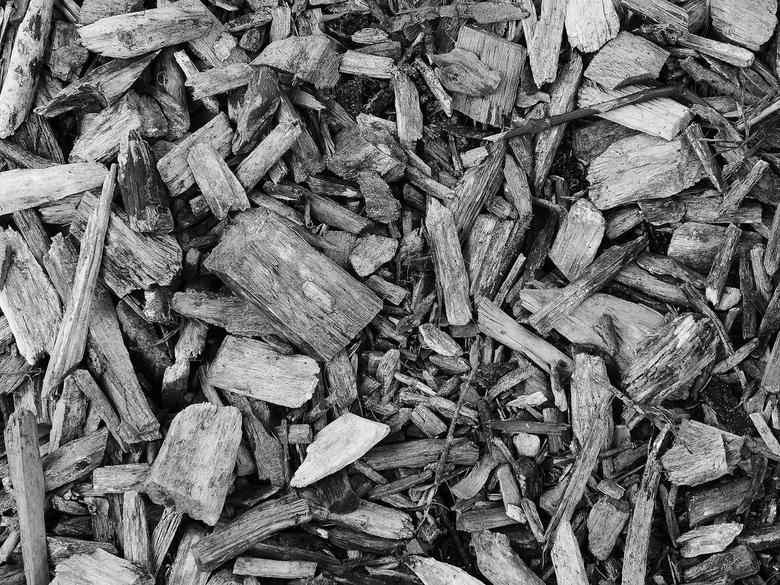 van hout -
