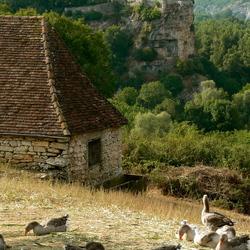 Le château sur le plateau