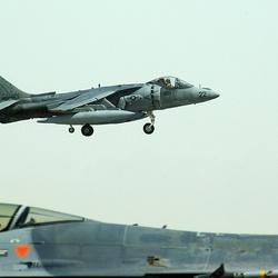 Harrier tijdens landing