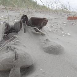 Met het zand in de schoenen