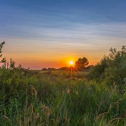 Een zonsondergang midden in de natuur