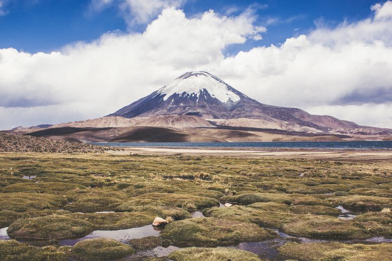 Lauca national park Chili - Lauca national park
