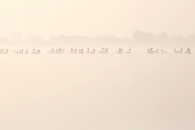 "Infinitude - Ganzen...mist...ganzen...mist...gaenzen...etc <img  src=""/images/smileys/wilt.png""/>"