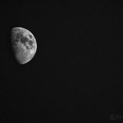 Amelandse maan