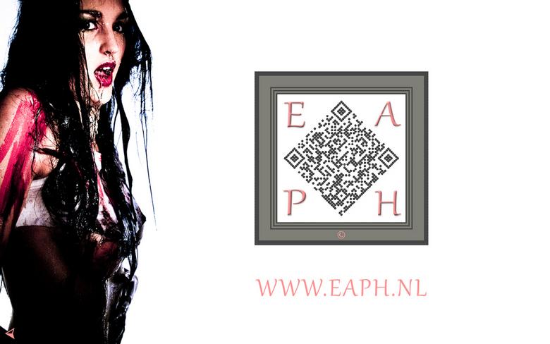 EAPH - Gert Jan van Noorden - Portfolio 2013