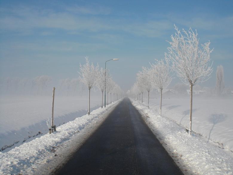 Winterse weg - Een weg in de winter