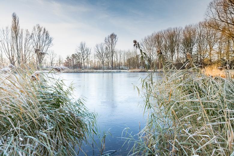 Sure feels like winter - Op 30 november in de ochtend schoot ik deze foto die voor mij het gevoel van winter goed weergeeft. De koele kleuren, het ijs