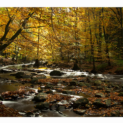 La Hoegne,Ardennen