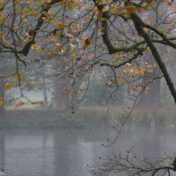 Herfst (2)