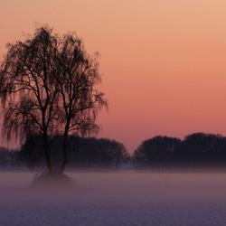 winterzon 2