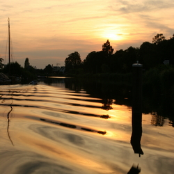 Oude IJssel Rimpels