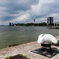 Gebouw vanaf  kop van zuid Rotterdam