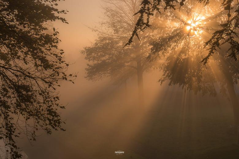 Explosion of light....