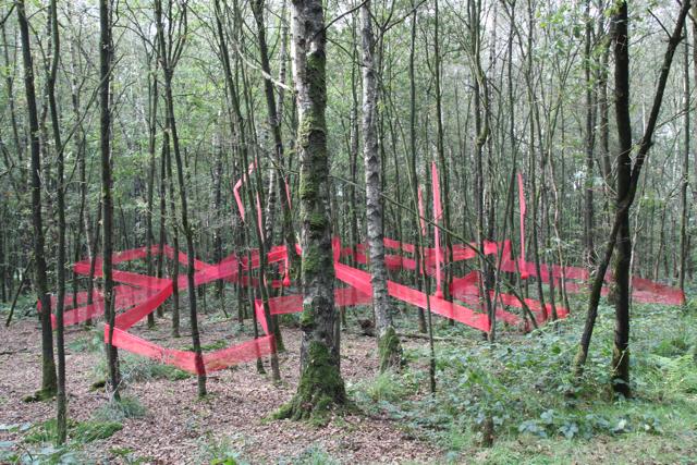 land art diessen - Een stukje bos in een rode sluier omhuld