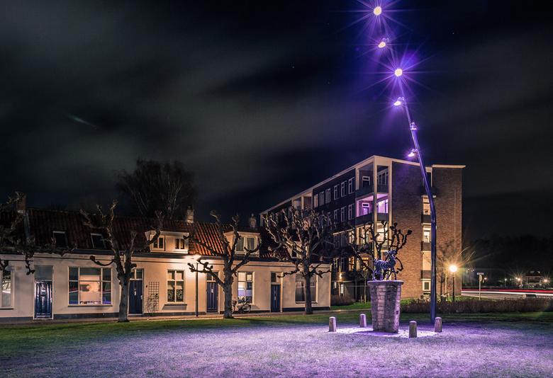 Geit van Mie den Os op het Bleekveld in Bergen op Zoom