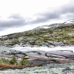 rivier in hardangervide