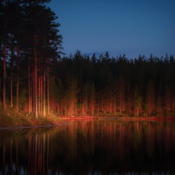 Evening Sweden