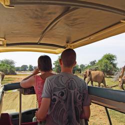 Samen op safarie,