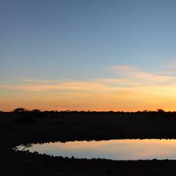 Okaukuejo Sunset - Panorama