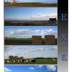 Texel I