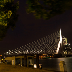 Erasmusbrug by night!