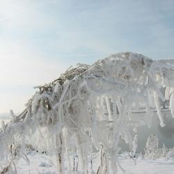 rijp en ijs aan de ijssel