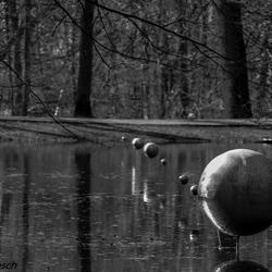 Sonsbeekpark   te Arnhem