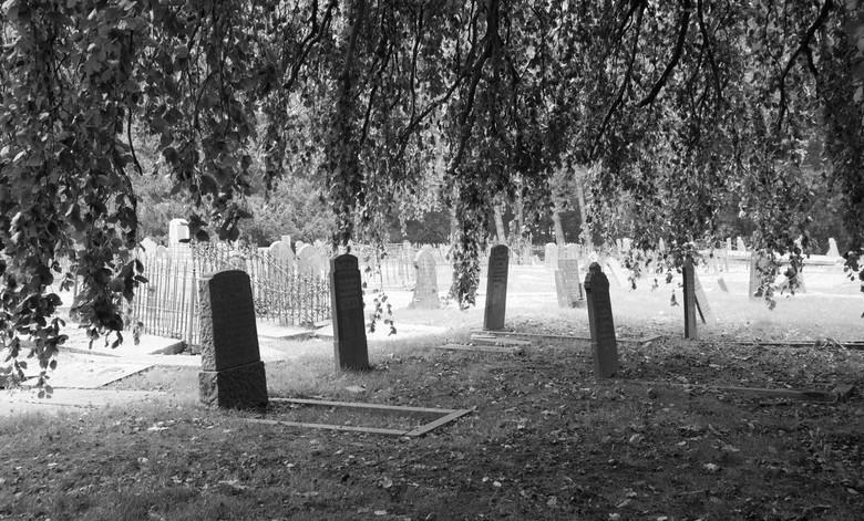 Oude stadsbegraafplaats Leeuwarden -